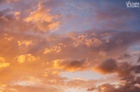 The Golden Sky | 28.08.2013