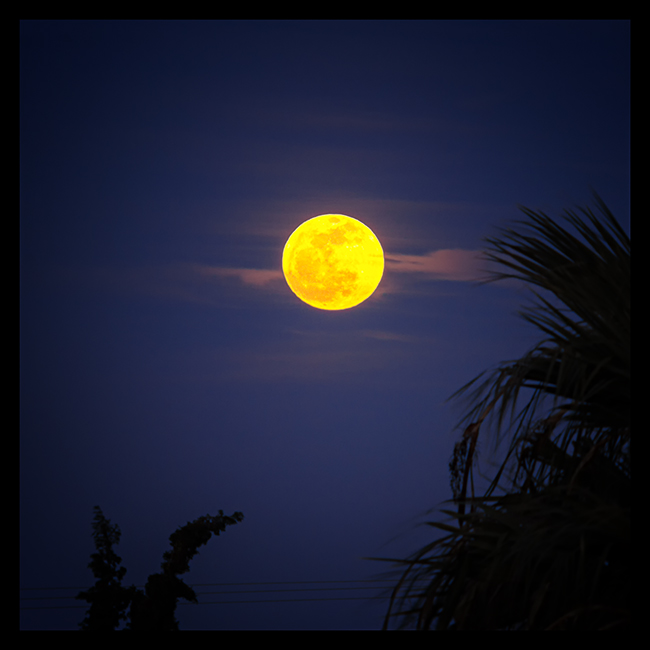 16.03.2014 | 18:50pm | Full moon rising over the Toronean Gulf