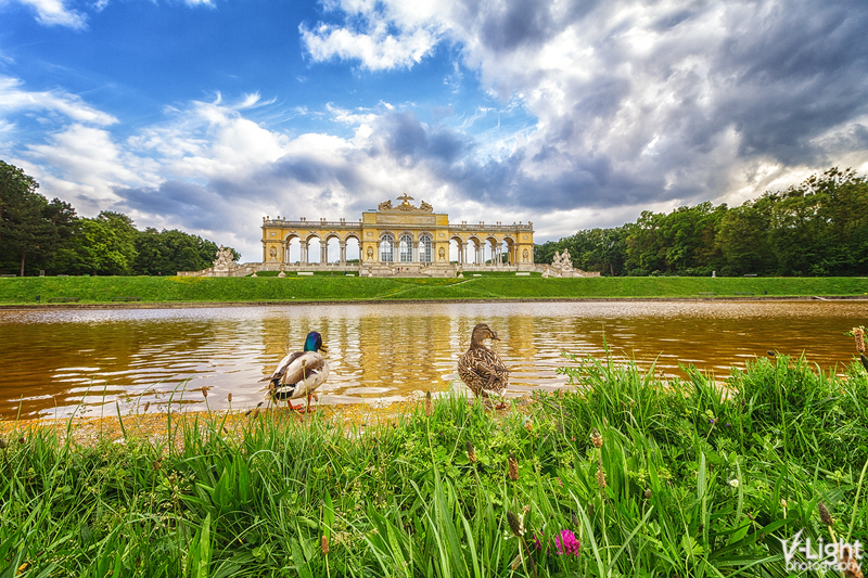 Ducking Around The Gloriette by V-Light Photography