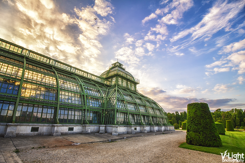 Palmenhaus by V-Light Photography (4)
