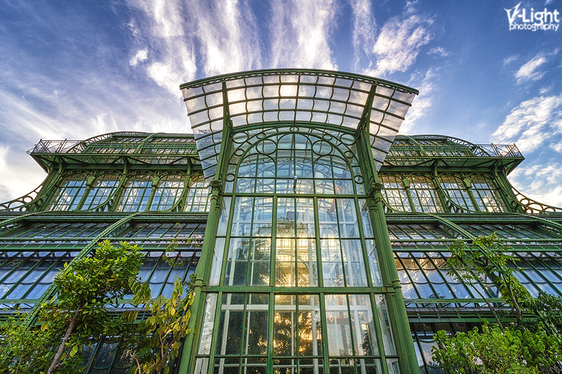 Palmenhaus by V-Light Photography (5)