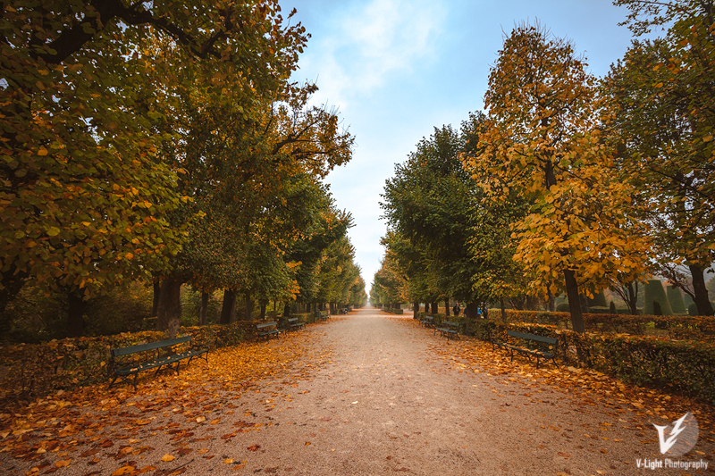 Autumn-in-Schoenbrunn-I-by-V-Light-Photography