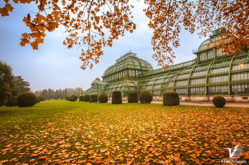 Autumn-in-Schoenbrunn-III-by-V-Light-Photography